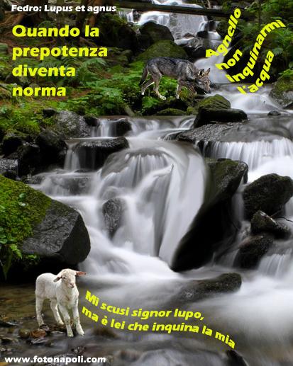 Il Lupo e l'agnello - Foto per l'articolo